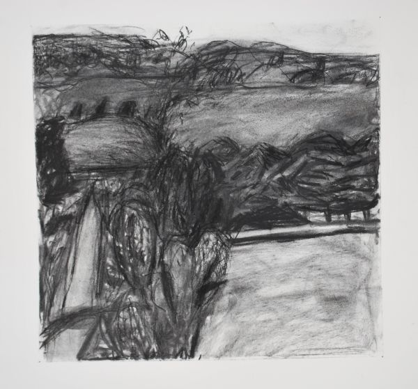 #1 charcoal on paper 22 cm x 22 cm