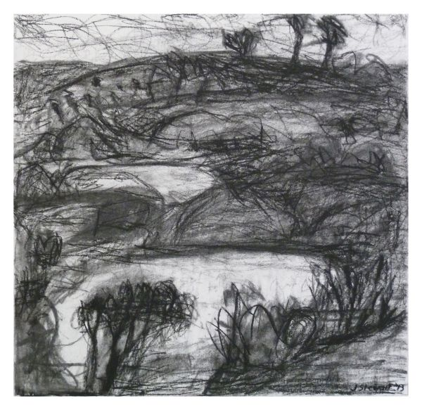 #5 charcoal on paper 22 cm x 22 cm